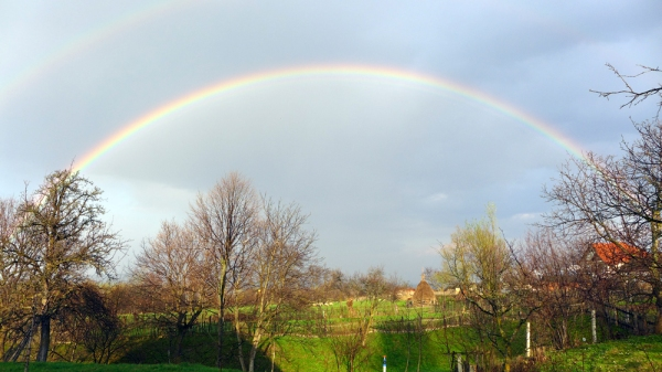 Catch the rainbow