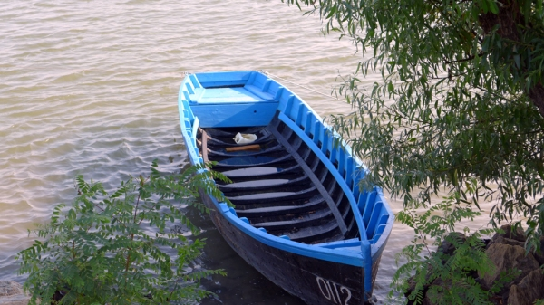 If I Had a Boat