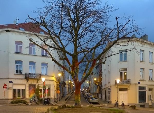 L'arbre Qui Voit